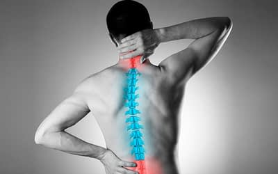 Bilingual highest rated chiropractor